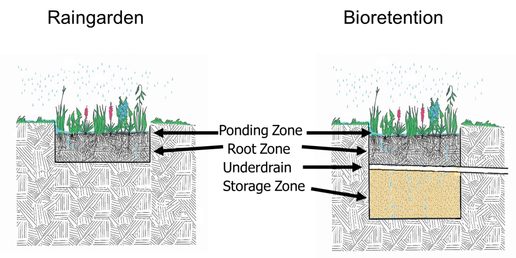 Rain gardens (left) are constructed in place. The use of an underdrain and storage zone with engineered soils differentiates the biofiltration system (right).