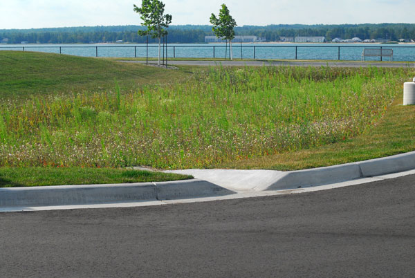 A grassed swale helps direct stormwater to filter out contaminants.