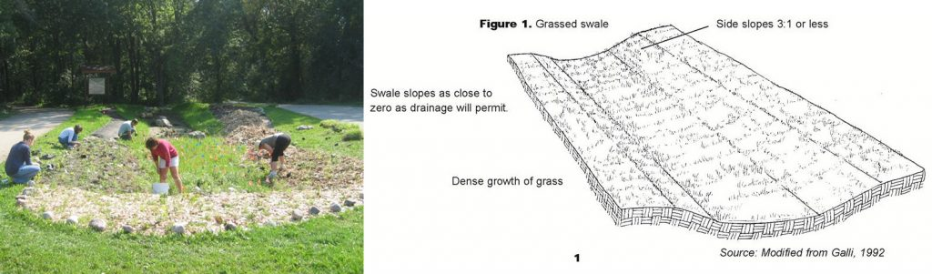Image and diagram of a grassed swale