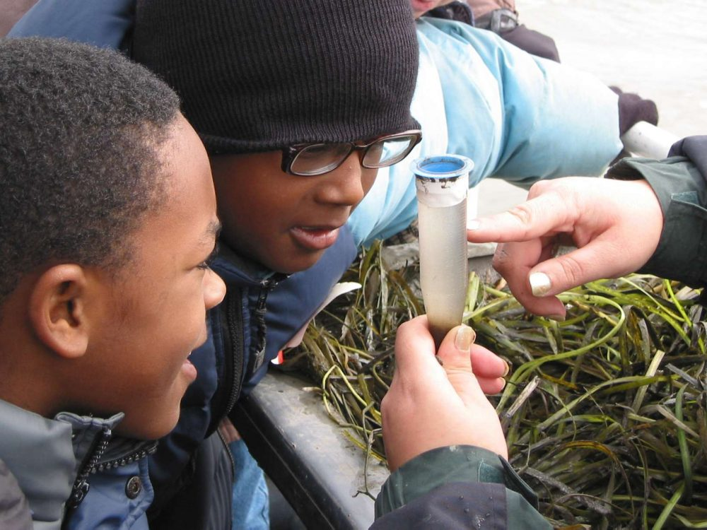 Two students look at a water sample from the river