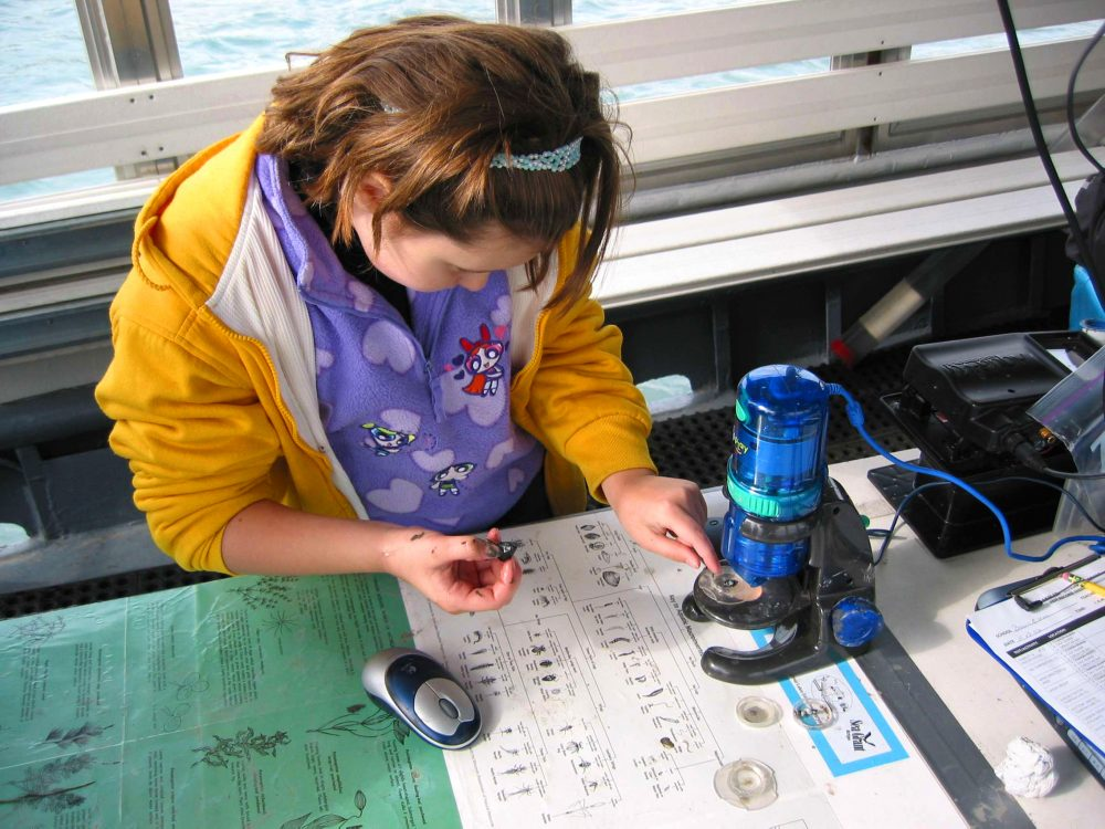A student looks at shell samples through a microscope from the lake and compares it to a poster for I.D.