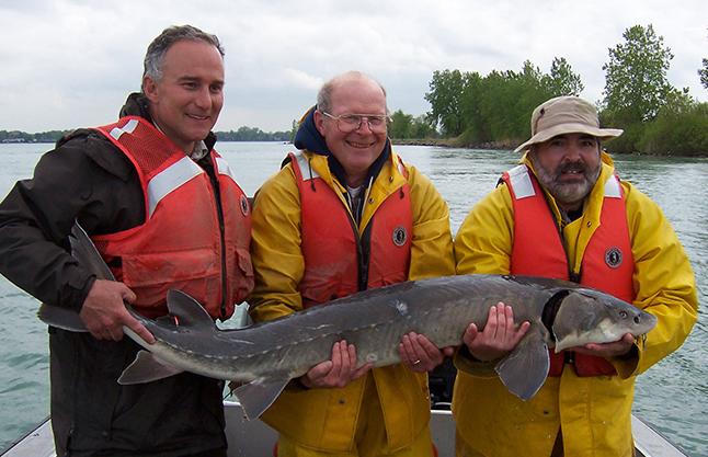 researchers holding a lake sturgeon