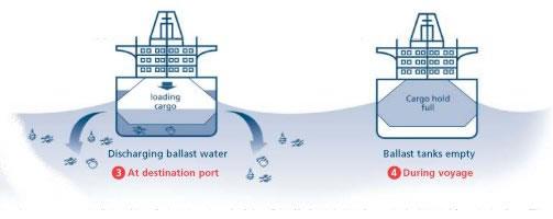 Ballast water discharge