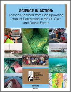Reef Projects Lessons Learned-cover