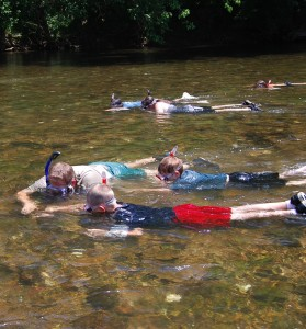 NT-Nature_Trek_Program-Snorkeling_on_the_Clinch_River_(5121545208)