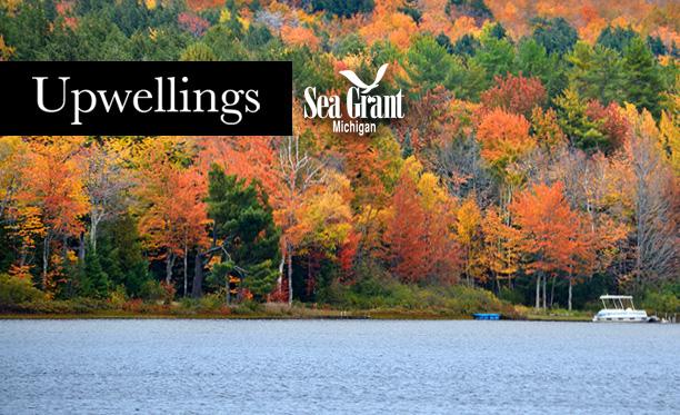 upwellings-november-2016-612x373