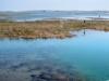 Harsens Island