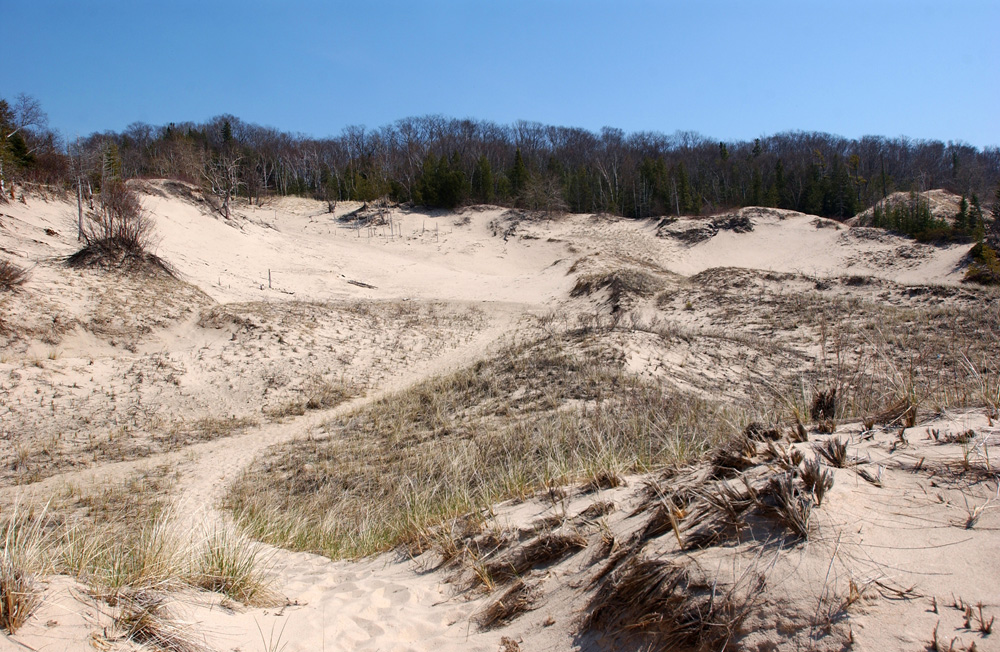 Dunes in Charlevoix, Michigan