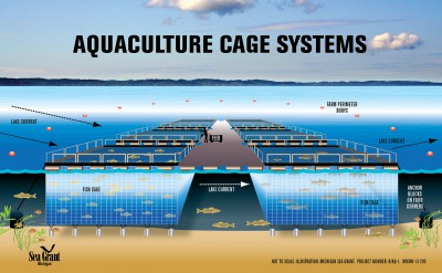 Great Lakes net-pen aquaculture—real and perceived risks to the environment