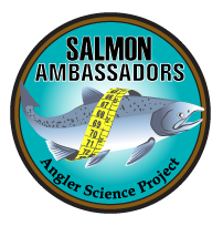 Four years of fishing data from Salmon Ambassadors show trends for wild, stocked salmon catch.