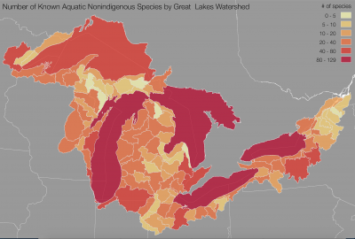 Great Lakes Aquatic Nonindigenous Species Information System (GLANSIS) map shows the number of nonindigenous species by Great Lakes watershed.
