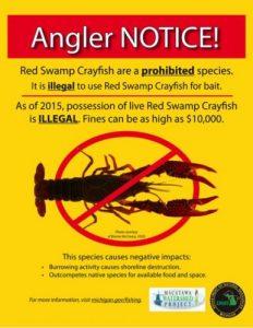 crayfishposter