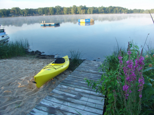 A yellow kayak is seen beached on the side of the lake near a pier. A stand of invasive purple loosestrife is nearby.