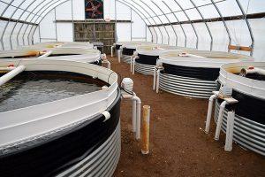 Aquaculture circular tanks