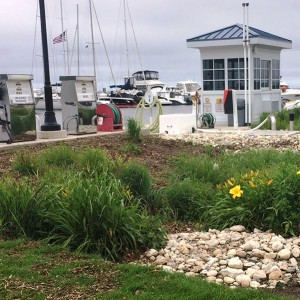 Clean Marina bioswale at Egg Harbor