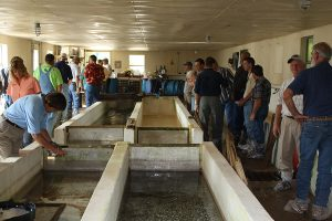 aquaculture biosecurity workshop