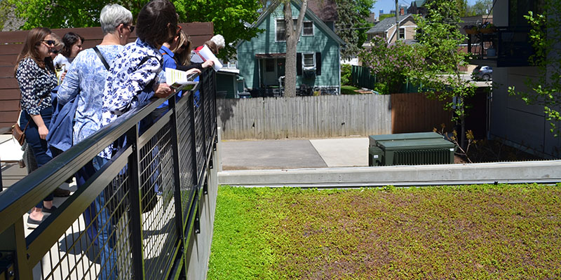 green roof at ann arbor apartment