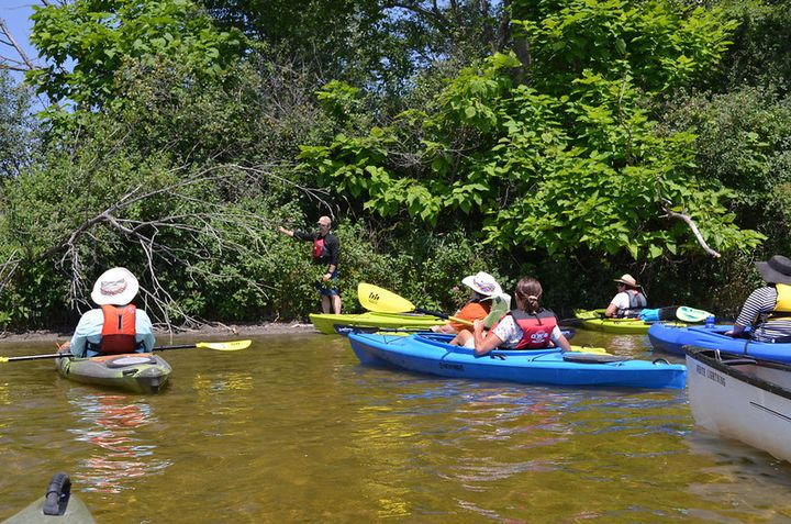 Paddlers! Become an ally in the fight against aquatic invasive species