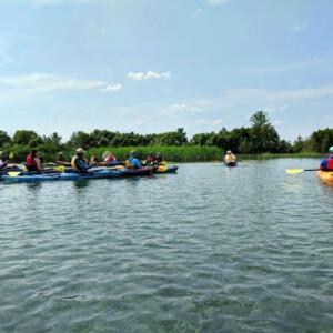MI Paddle Stewards event, kayaks on the lake