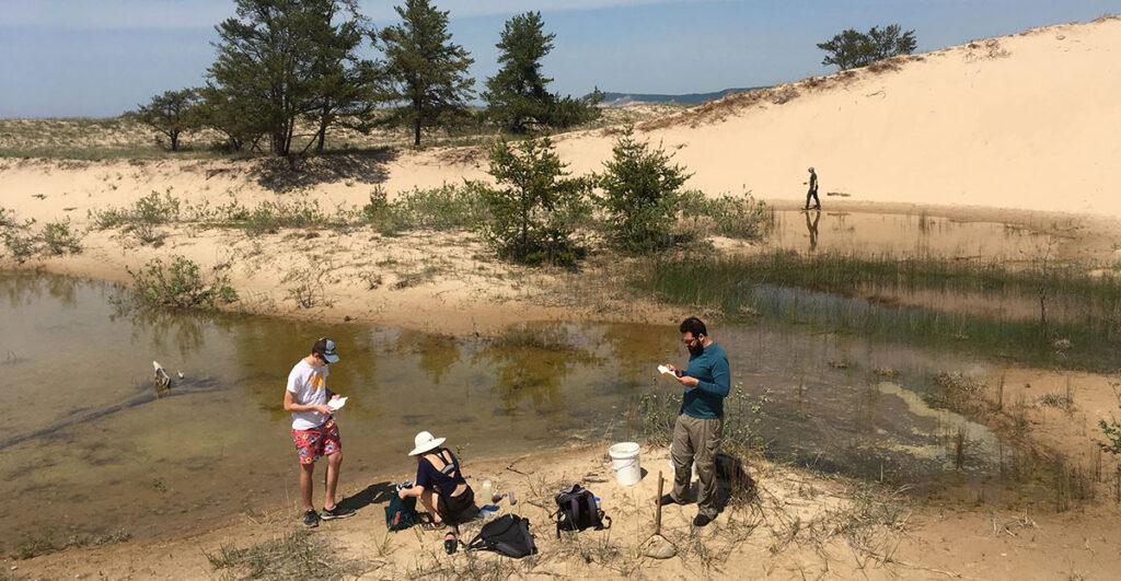 Interdunal wetland research project