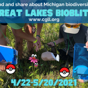 BioBlitz header image - people in the field working on project