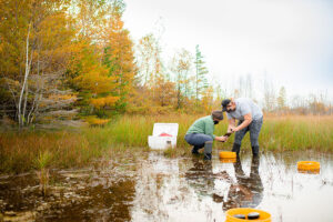 Erin Eberhard research project equipment on a wetland