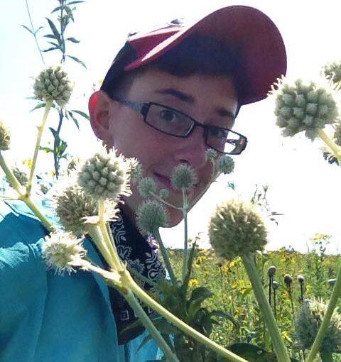 El in a prairie
